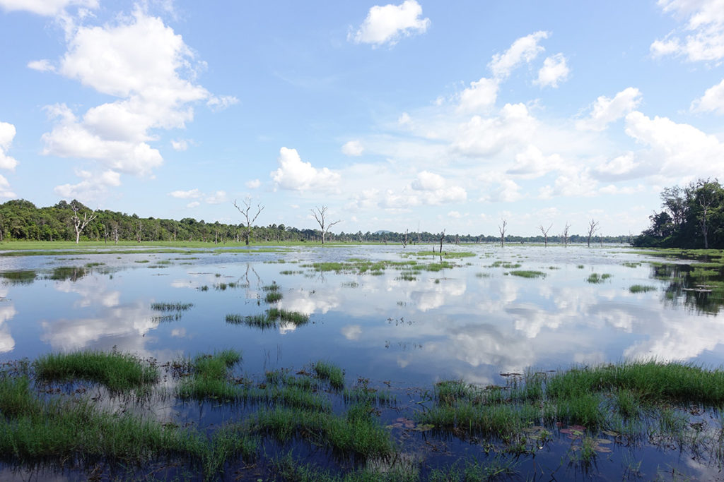Lake on the walk to Neak Poan (Photo by Carol)
