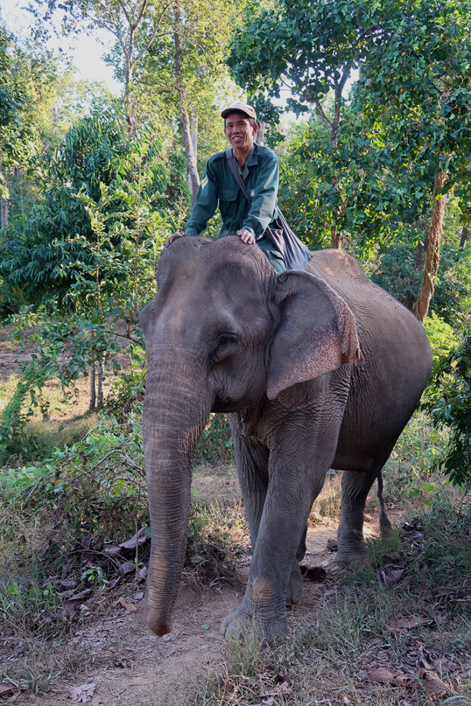 Elephant Conservation Centre